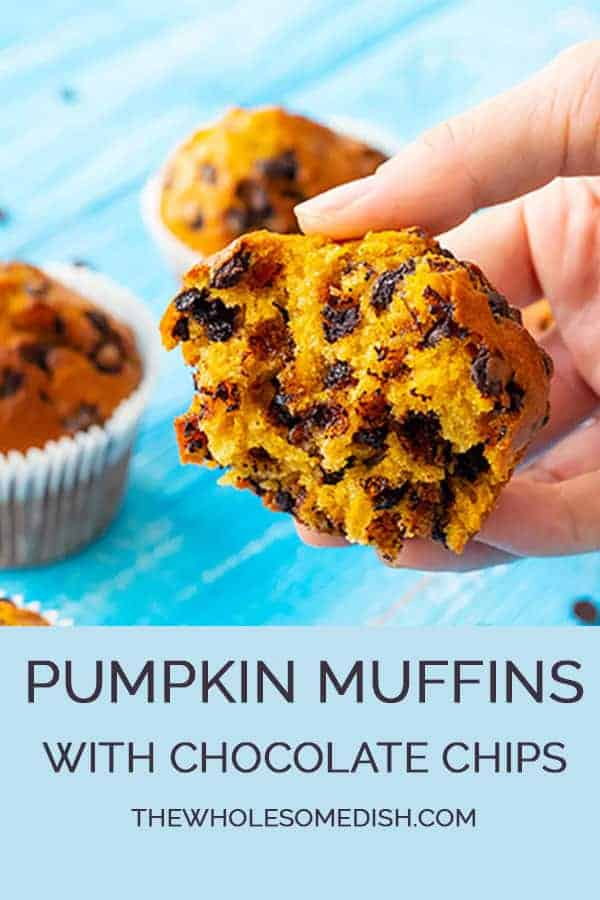 Chocolate Chip Pumpkin Muffin Recipe with muffin pulled apart showing the chocolate chips inside