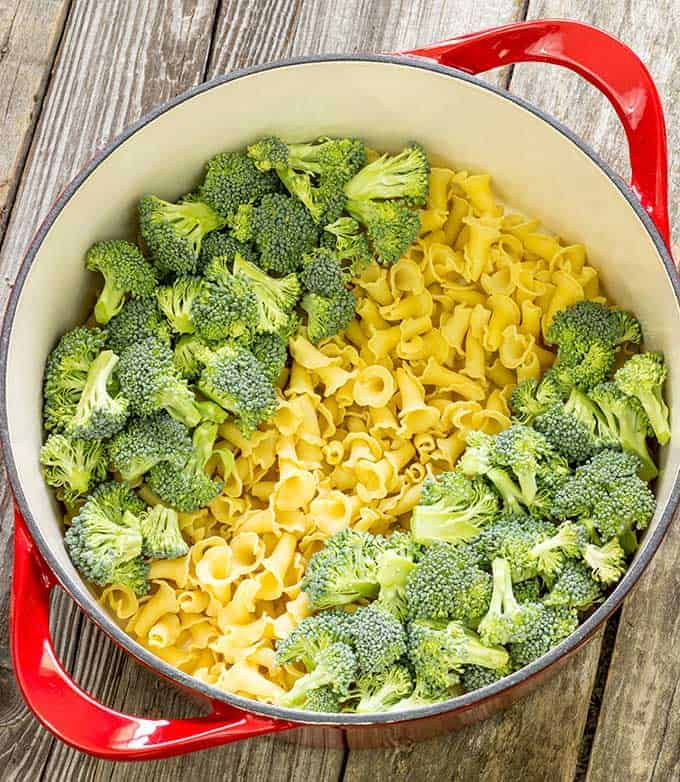 Fresh broccoli and uncooked pasta in a pot for 1 pot pasta