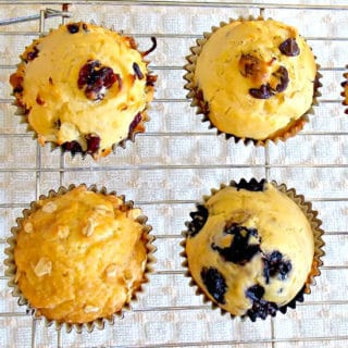 4 muffins made with the standard muffin recipe - blueberry, chocolate chip, cranberry coconut, and brown sugar oat muffins