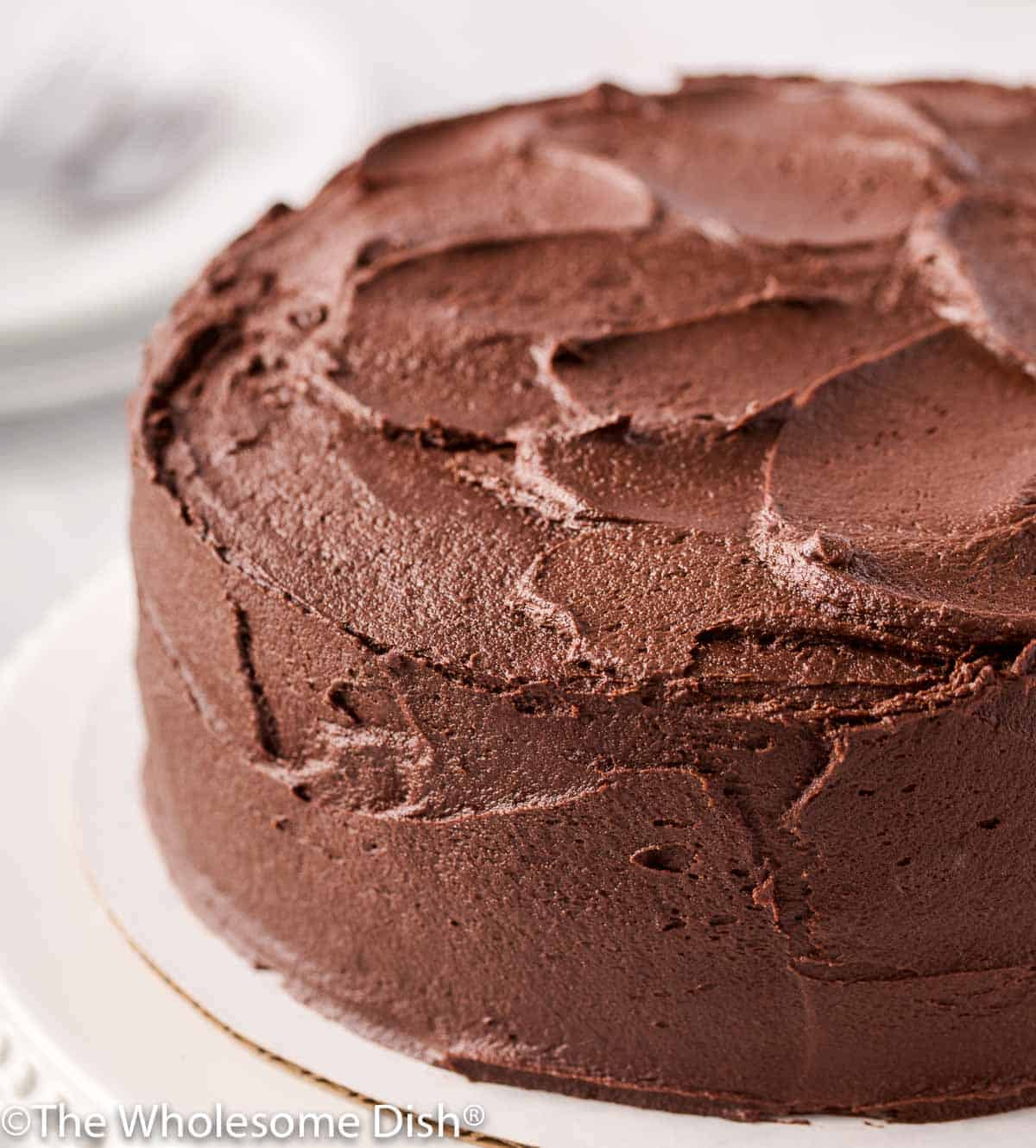 2 layer chocolate cake with chocolate icing on a cake stand